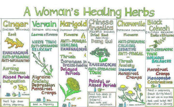 A woman's healthing plants