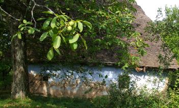 EcoTurism in Romania