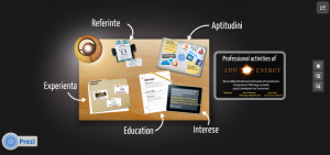 Esperienta, referinta, aptitudini, educatie, interese
