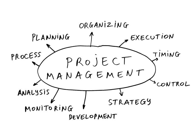 Poza management de proiect