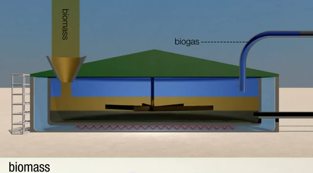 biomass  biogas