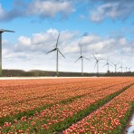 danes shows neighbours can learn to love wind turbines