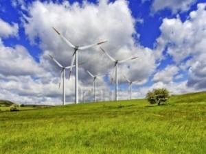 guvernul permite exproprierea pajistilor pentru proiecte de energie regenerabila