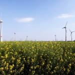 how noisy is a wind turbine