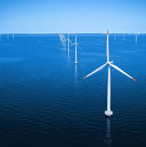 offshore wind farms benefit sealife says study