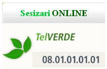 Sesizari online