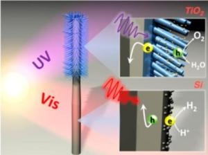 Artificial Forest for Solar Water-Splitting First Fully Integrated Artificial Photosynthesis Nanosystem