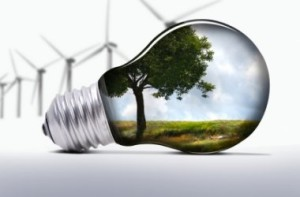 Guvernul a adoptat ordonanta referitoare la subventionarea energiei verzi. Ce prevede actul normativ
