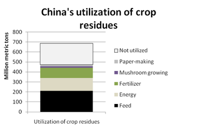 Most relevant limiting factors for huge expected bioenergy growth in China for the next years 02