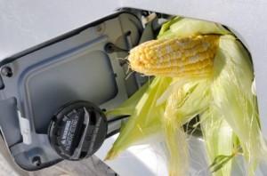Cota biocarburant din benzina se reduce