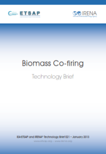 Technology brief - Biomass Co-firing, 01.2013