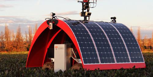 Ladybird, primul robot solar destinat agriculturii a fost lansat în Australia 01
