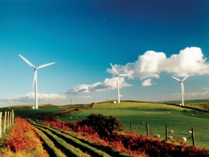 new renewable energy projects