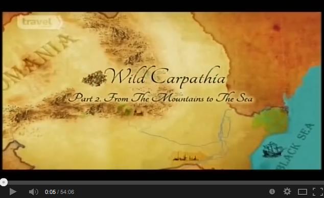 wild carpatia