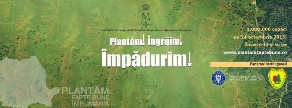 plantare 01