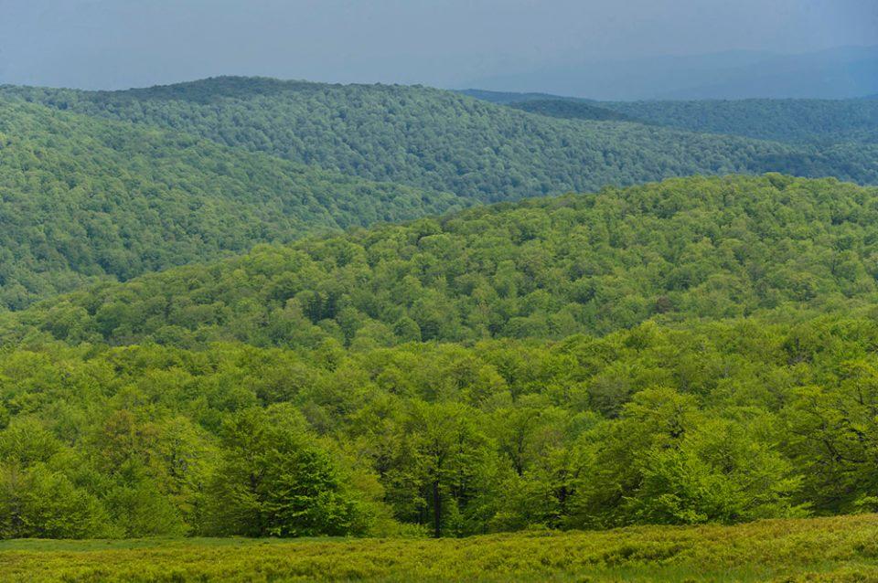Parcul National Semenic