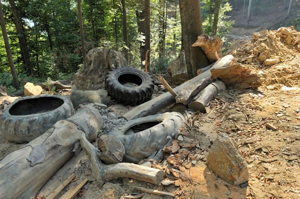Taieri ilegale si ce ramane in urma lor in Parcul National Retezat
