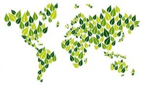 oraşe sustenabile