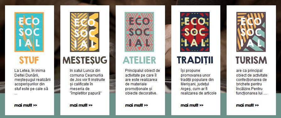 Ecosocial 01